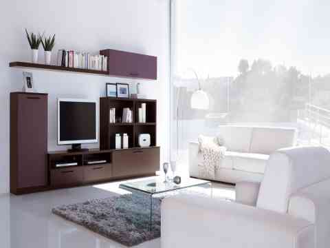 Adorable LCD Cabinet And Sophisticated Living Room Interior Design