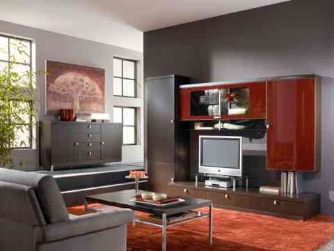 Beautiful Living Room LCD Cabinet And Maroon Rug