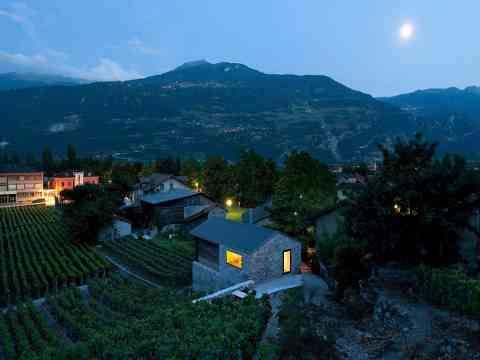 Evening Lighting Grape Vines Vetroz Switzerland
