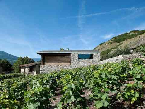 Grape Vines Cottage Remodel In Switzerland