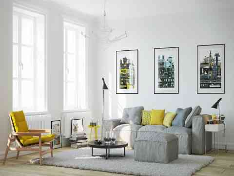 Grayish Sofa And Rug Art Wall Design