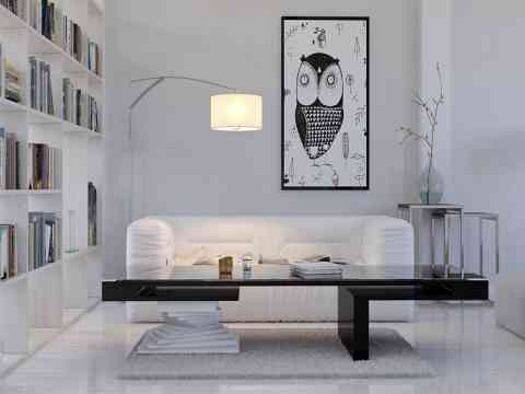Owl Art White Sofa And Book Shelves Design